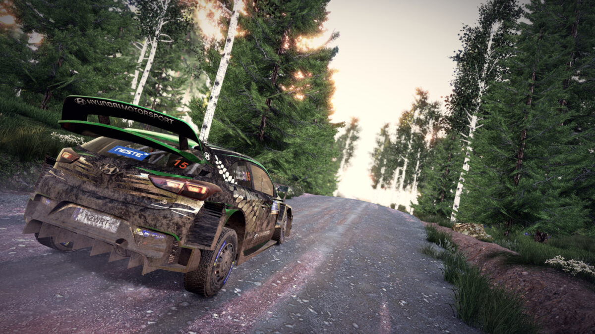 You can now access a photo mode in WRC 9